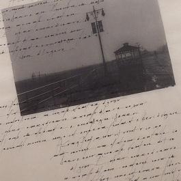 Tavola - Formato 45x60cm - inchiostro Sumi su carta artigianale orientale Hokosawa
