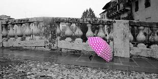 GALLERIA ART CAFFE' - ROMA 2013 LDD