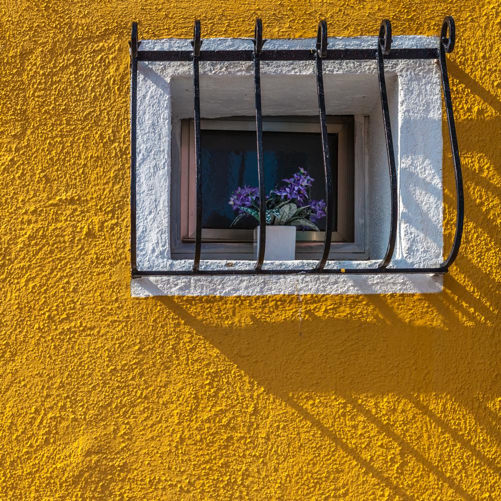 Muri&Colori