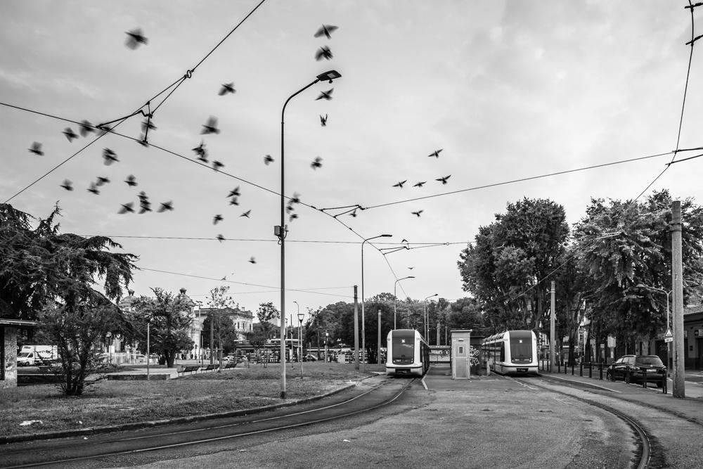 Linea 14, Piazzale Cimitero Maggiore