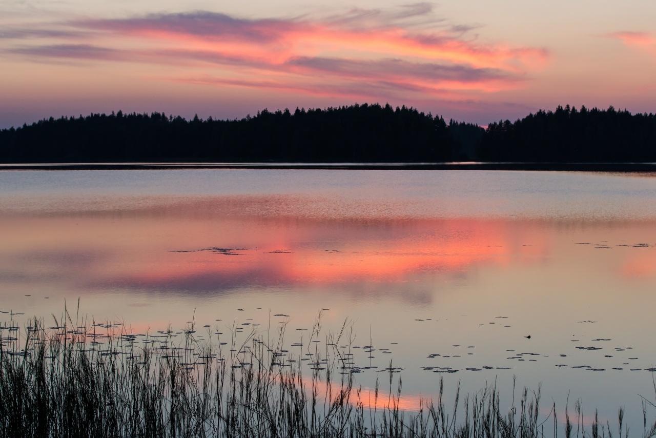 Alba - Finlandia 2013